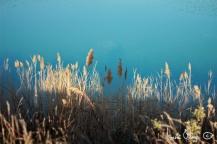 Cyrille et moi. Le lac de Cécélés, 2013