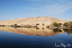 Egypt, 2008