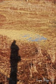 Moi. Le lac de Cécélés, 2013