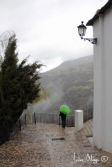 Sierra nevada. Granada. 2015