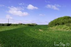 Sud de la Bretagne, 2009- 11