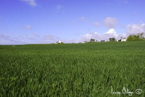 Sud de la Bretagne, 2009- 12