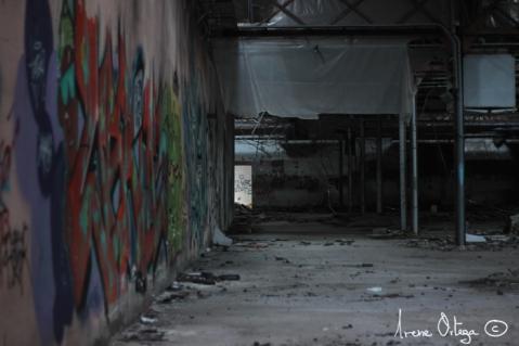 Usine à Lodève. 2014-5